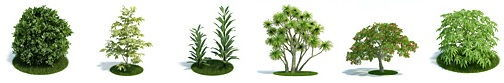 آبجکت درخت سبک تری دی مکس