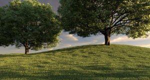 دانلود رایگان آموزش کرک پلاگین ساخت چمن Autograss