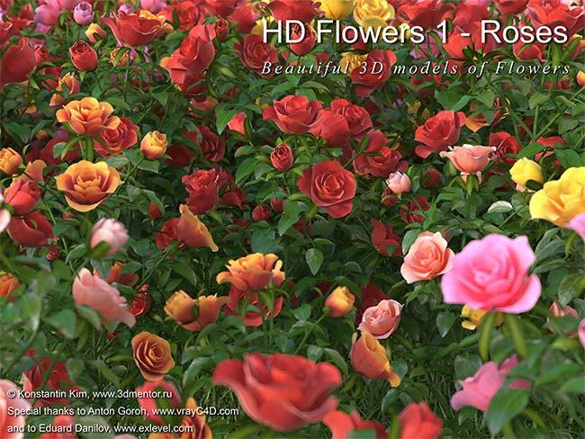 HD Flowers 1 Roses Forest Pack pro آبجکت گل گیاه سینمافوردی تری دی مکس