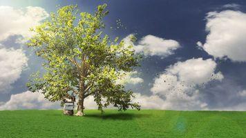 پلاگین ساخت درخت تریدی مکس واقع گرایانه آموزش اسپید تری SpeedTree