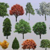 دانلود رایگان تکسچ درخت دو بعدی PNG برای فتوشاپ Evermotion Textures4ever Vol 7