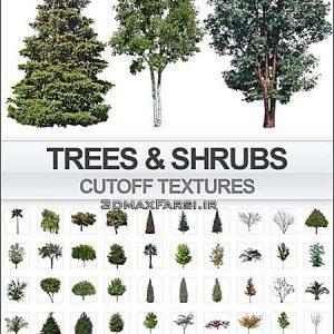 دانلود رایگان تکسچر تصاویر دو بعدی درخت بوته از نمای روبه رو فتوشاپ Imagecels Trees Shrubs Transparent Background