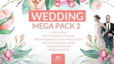 دانلود رایگان پروژه آماده افتر افکت پریمیر برای فیلم عروسی Videohive Wedding