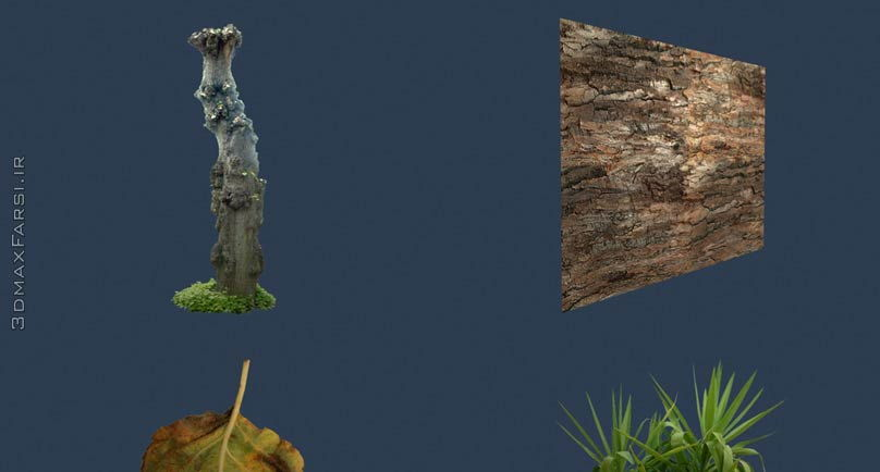 Total Textures V10R2 - Trees . Plants
