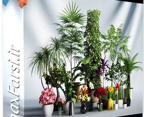 دانلودآبجکت گل و گیاهCGAxis Models Volume 1 Plants 3ds amx Vray