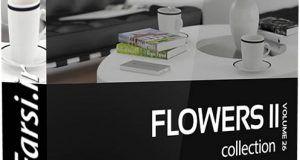 دانلود آّجکت گل و گیاه CGAxis Models FLOWERS II