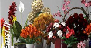 دانلود رایگان گلدان تزیینی گل و گیاه تری دی مکس CGAxis Models Volume 6 Flowers