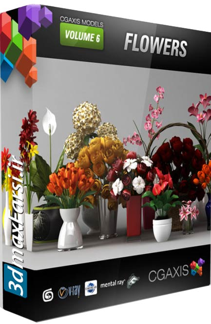 Download CGAxis Models Volume 6 Flowers