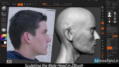Photo of صفر تا صد آموزش مدلسازی سر و صورت انسان Sculpting Head ZBrush