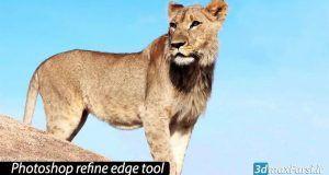 آموزش ابزار Refine Edge انتخاب مو در فتوشاپ