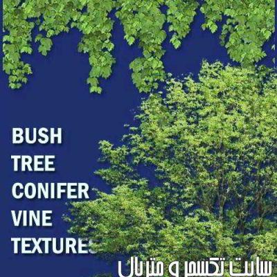 دانلوددرختبرای فتوشاپ + مپ آلفاTree Textures Alpha Files