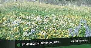 دانلود رایگان آبجکت گل و گیاه تری دی مکس + وی ری Wild Plants 3D Models Collection Volume 91