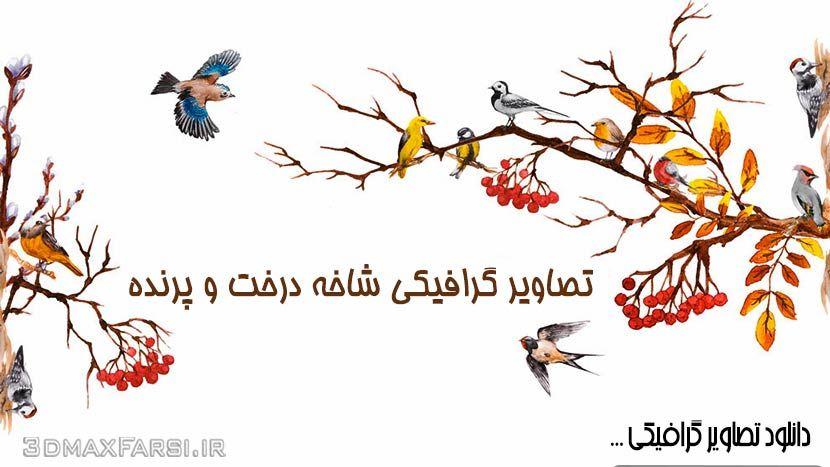 دانلود تصاویر گرافیکی شاخه درخت و پرنده