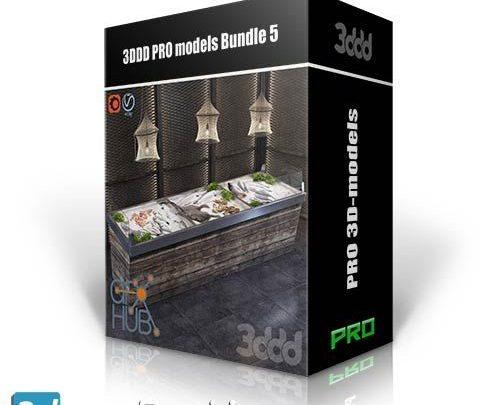 پکیج فوق العاده آبجکت معماری تری دی مکس 3DDD PRO models – Bundle 5