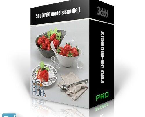 دکوراسیون داخلی تری دی مکس ویری با کیفیت بالا 3DDD PRO models