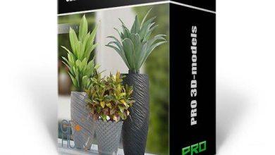 آبجکت با کیفیت بالا برای تری دی مکس 3DDD PRO models – Bundle 23