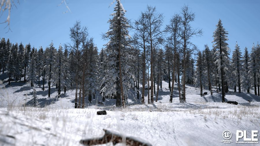 download Unreal Marketplace - Procedural Landscape Ecosystem