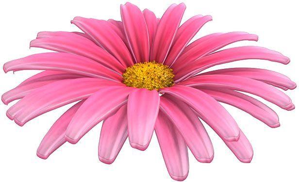 پروژه آماده افتر افکت انیمیشن اجزای گل گیاه videohive : 108 Flower Elements