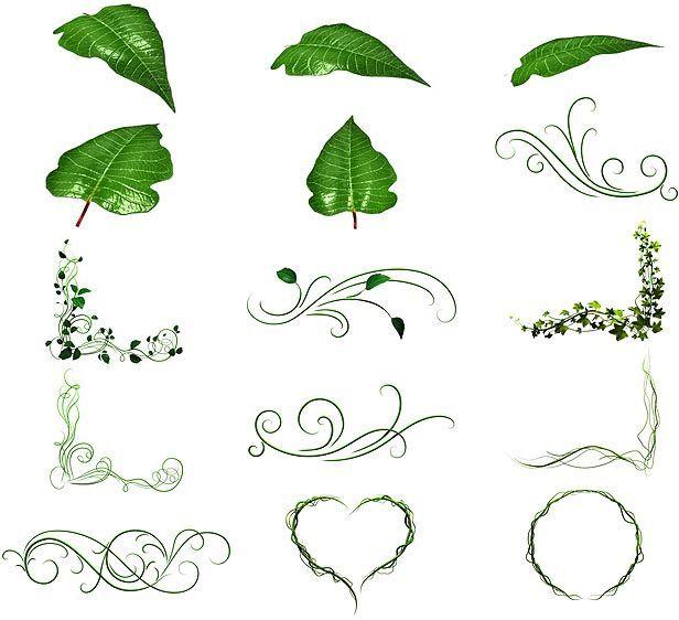 دانلود پروژه آماده افتر افکت انیمیشن اجزای گل گیاه videohive : 108 Flower Elements
