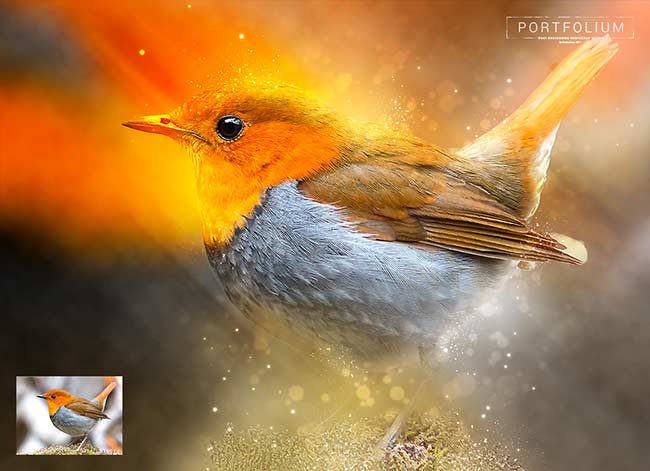 دانلود اکشن فتوشاپ: مجموعه اکشن های متنوع portfolium post processing photoshop action