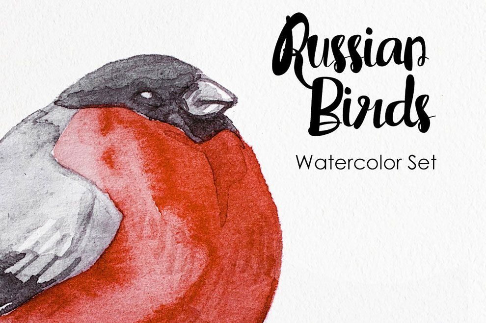 watercolor russian birds graphics template دانلود