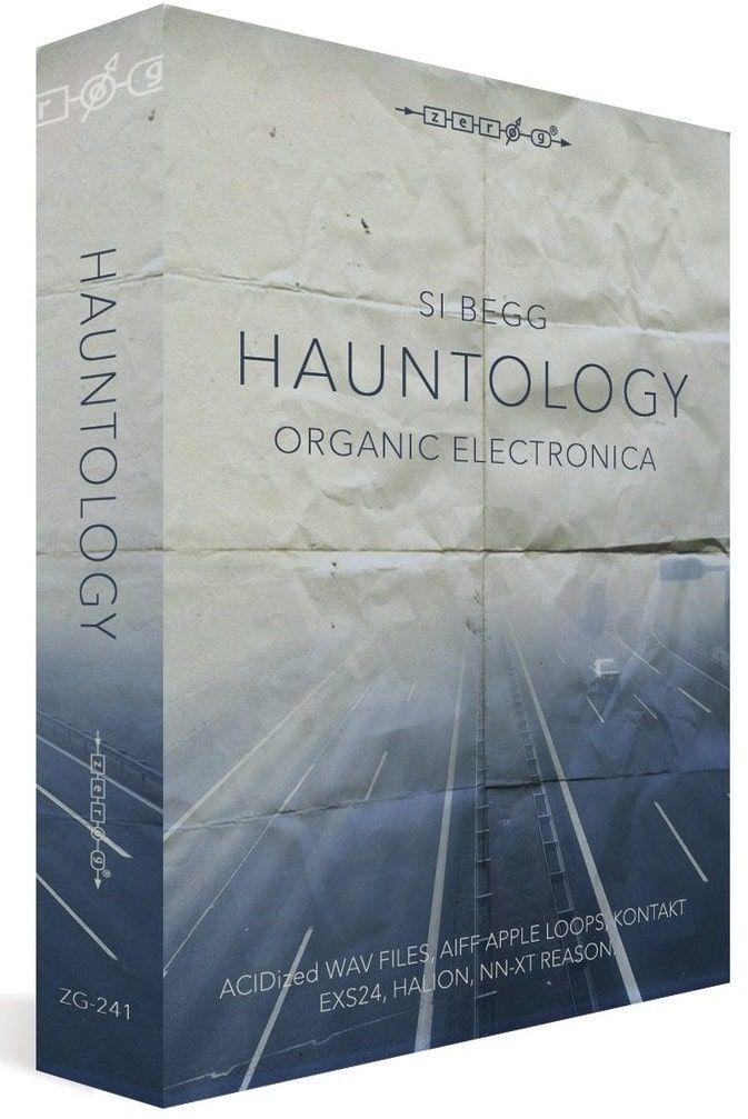 افکت صوتی الکترونیک ارگانیک Hauntology Organic Electronica