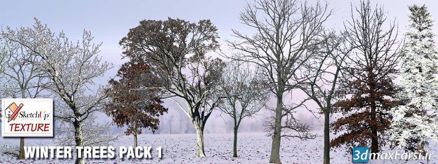 درخت درخت زمستانی نما