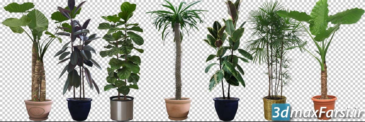 دانلود گل و گیاه برای فتوشاپ (گلدان دو بعدی) Cut out Pot plants