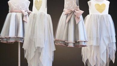 Photo of دانلود آبجکت لباس دخترانه تری دی مکس Two Children's Dresses