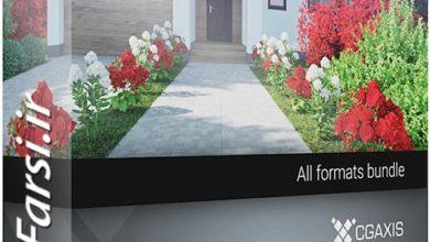 Photo of دانلود مدل سه بعدی درخت باغ ویلا CGAxis Models 66 Garden Plants II