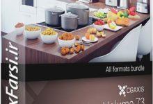 Photo of دانلود آبجکت غذا میوه سبزی CGAxis Models Volume 73 3D Food VI