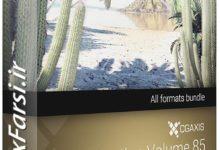 Photo of دانلود آبجکت تنه درخت گرمسیری CGAxis Models Volume 85 Exotic Plants II