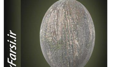Photo of دانلود متریال چوب حرفه ای CGAxis PBR Textures Vol 13 Wood