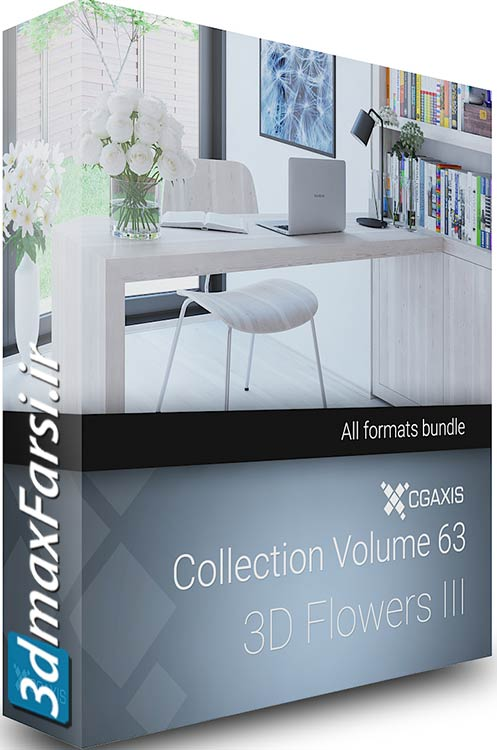 Download CGAxis Models Volume 63 3D Flowers III