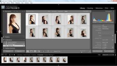 آموزش لایت روم Lynda – Organizing and Archiving Digital Photos