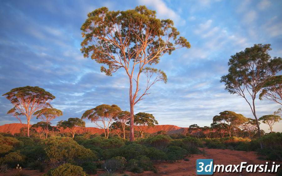دانلود رایگان آرچ مدل Archmodels vol.238 : مدل سه بعدی درخت استرالیا و اقیانوسیه