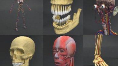 مدل سه بعدی آناتومی بدن انسان Dosch 3D: Human Anatomy
