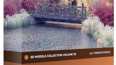 دانلود رایگان مدل سه بعدی درخت پاییزی CGAxis – Autumn Trees 3D Models Collection – Volume 115