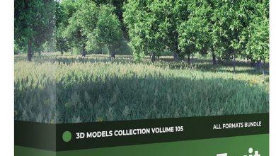 مدل سه بعدی درخت میوه CGAxis – Fruit Trees 3D Models Collection – Volume 105