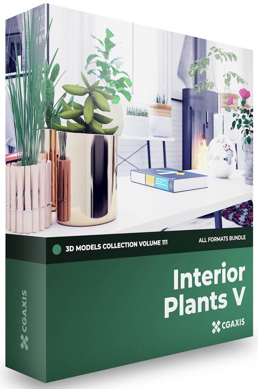 دانلود رایگان مدل سه بعدی گل تزیینی CGAxis – Interior Plants 3D Models Collection – Volume 111