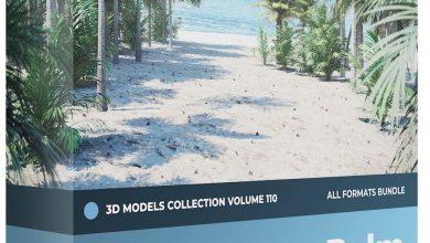 دانلود رایگان مدل سه بعدی درخت نخل CGAxis – Palm Trees 3D Models Collection – Volume 110