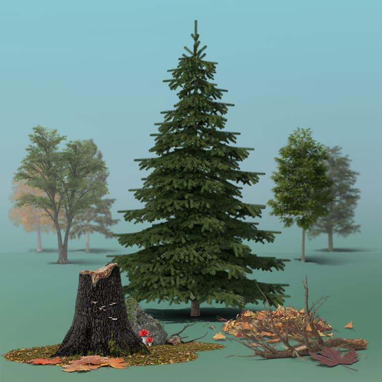 عکس گرافیکی جنگل با جزئیات PixelSquid – Forest Details Collection