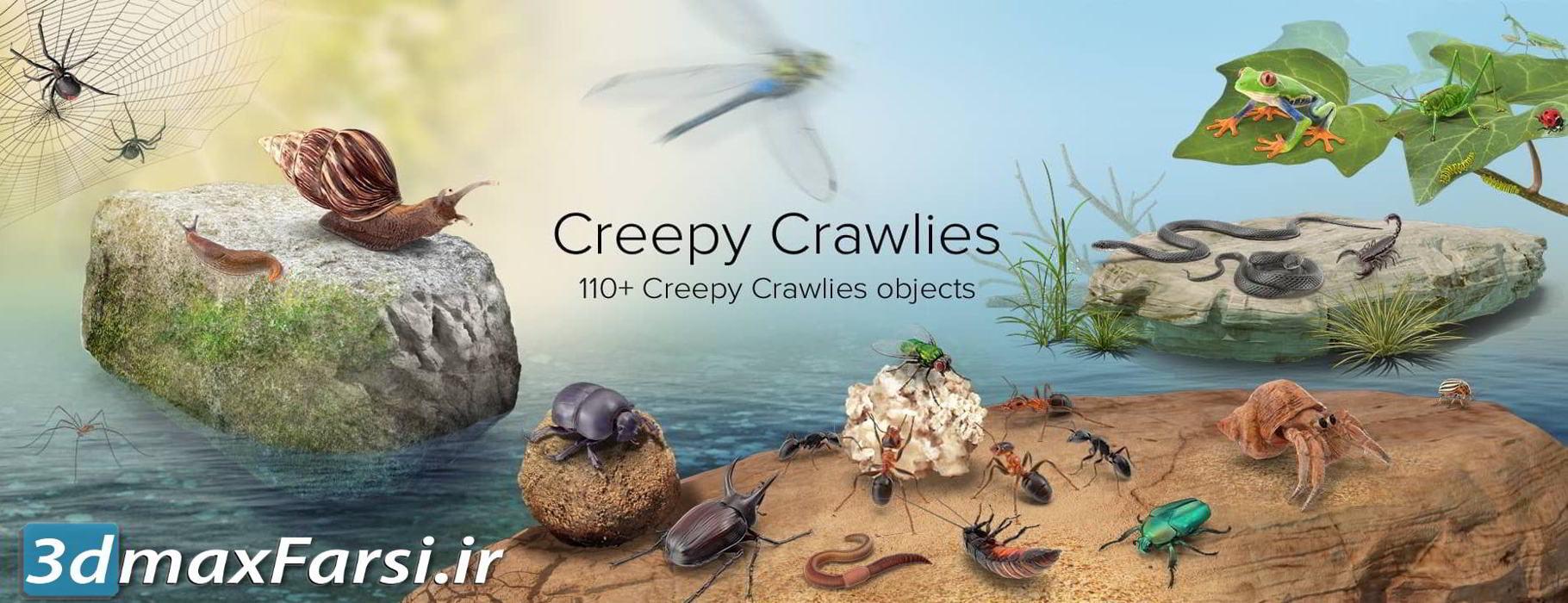 عکس گرافیکی خزنده PixelSquid – Creepy Crawlies Collection