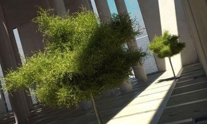 آبجکت درخت سبک